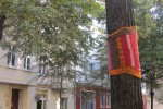 More guerrilla knitting and International Yarn Bombing Day